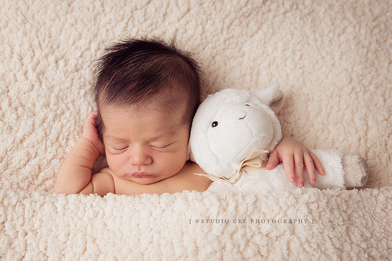 Newborn photographers orange county